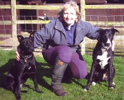 Wendy Hill www.wendyhill-dog-training.co.uk