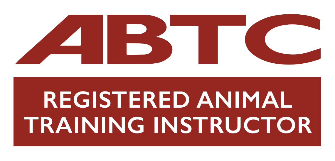ABTC Training Instructor
